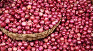 onion-full